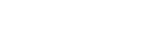 LNB White Logo